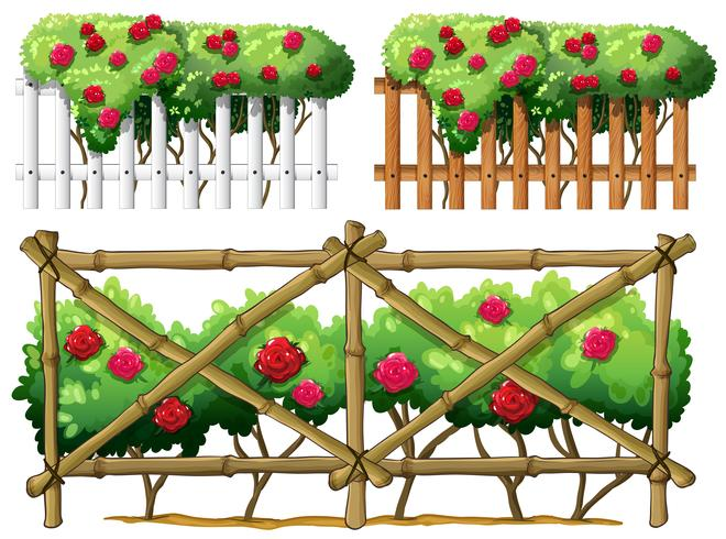Fence design with roses