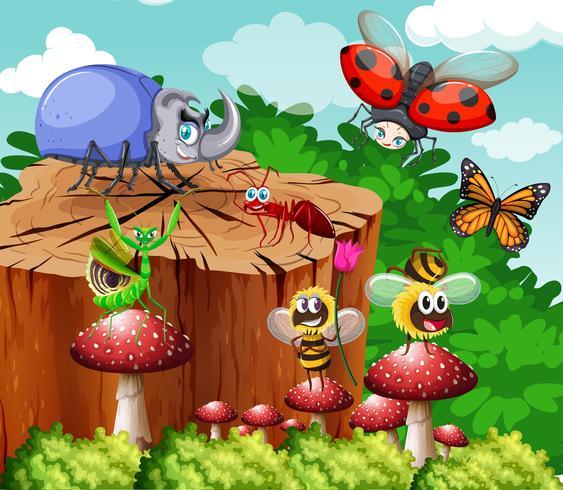 Diferentes tipos de insectos en el jardín.