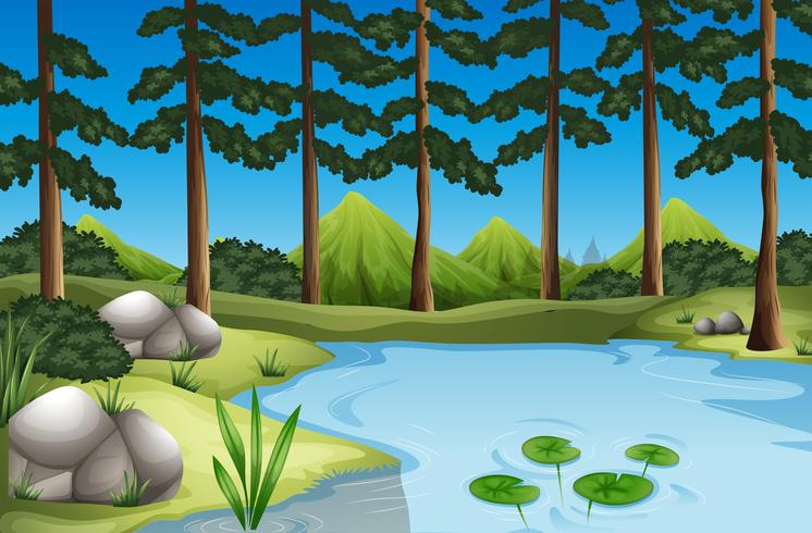 Forest scene with trees and river - Download Free Vector Art, Stock Graphics & Images