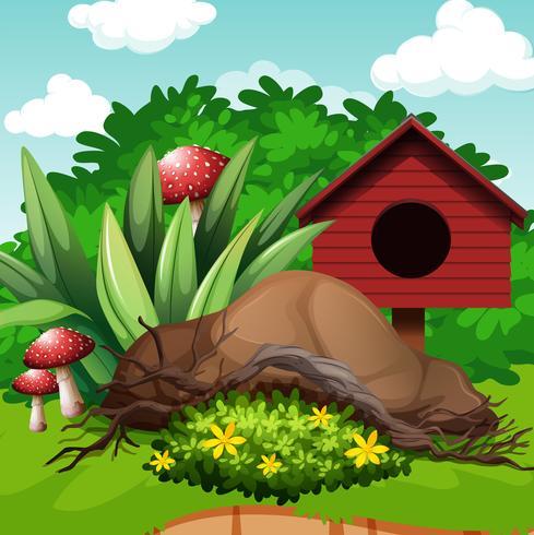 Trädgård med fågelhus och svamp