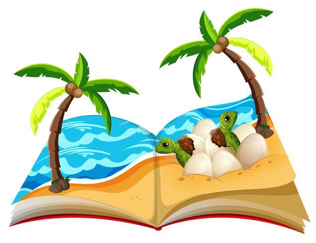 Abra o livro dos filhotes de tartaruga