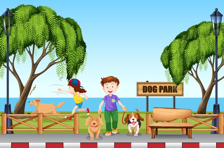Persone al parco cani con i loro cani