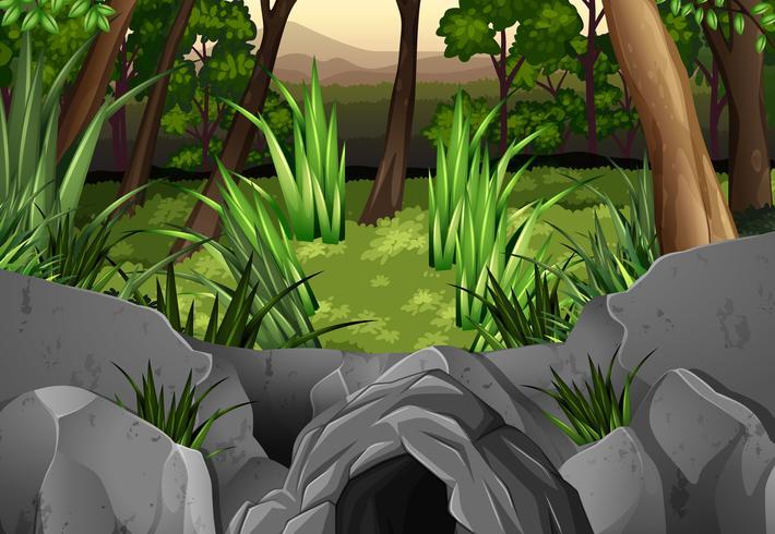 Cena de floresta com árvores ao redor da caverna
