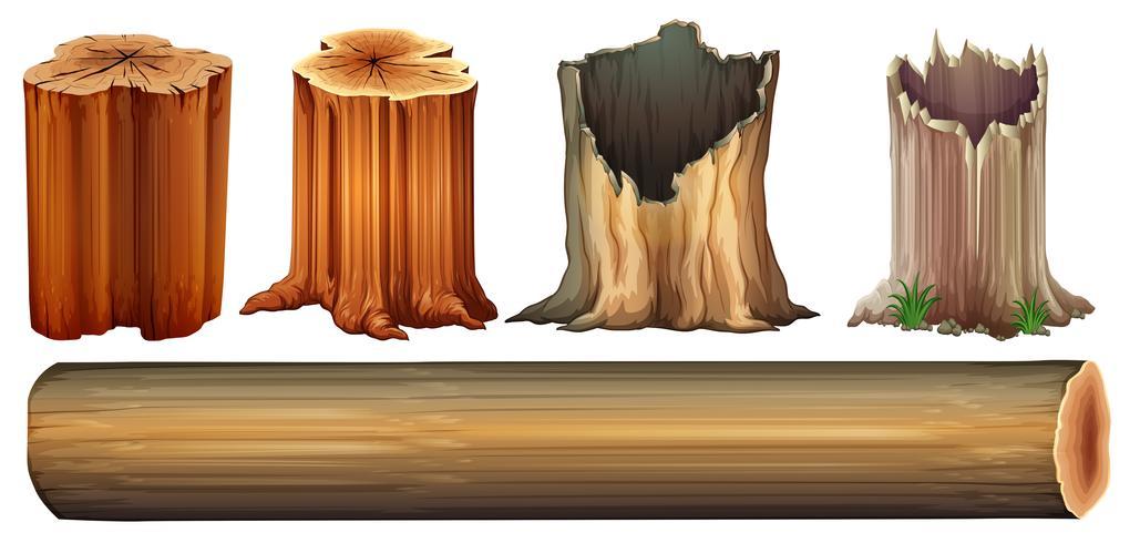 Un tronco y troncos de árboles.