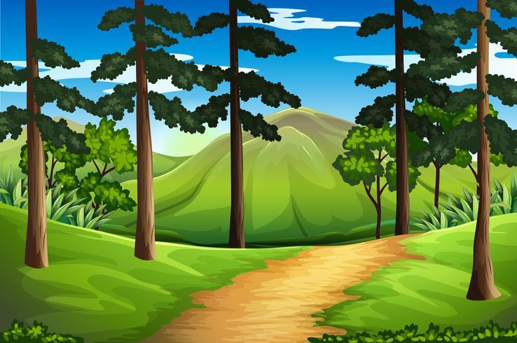 Cena, com, árvores altas, e, montanha