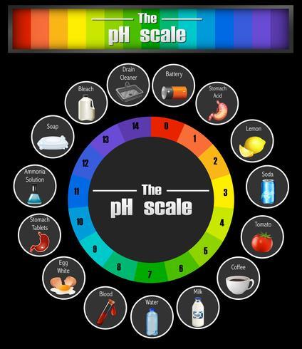 Modelo de escala de pH da ciência