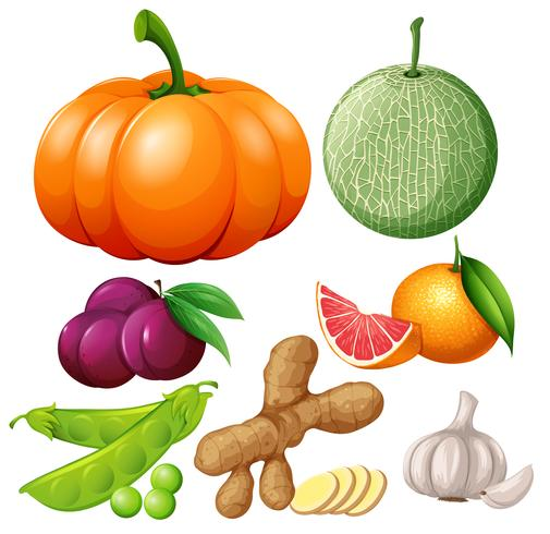 Fresh fruits and vegetables vector