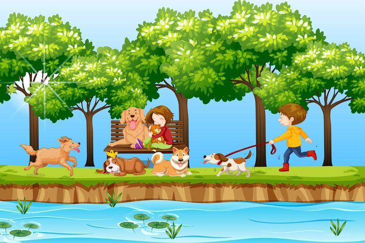 Niños y perros en el parque.