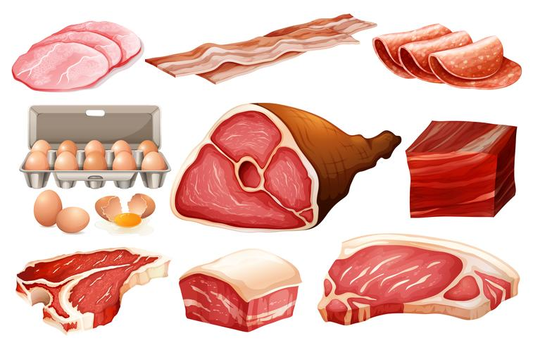 Ingrediente fresco para productos cárnicos. vector