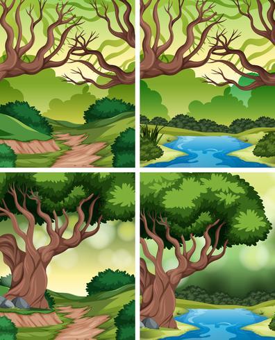 Set of tropical rainforest background