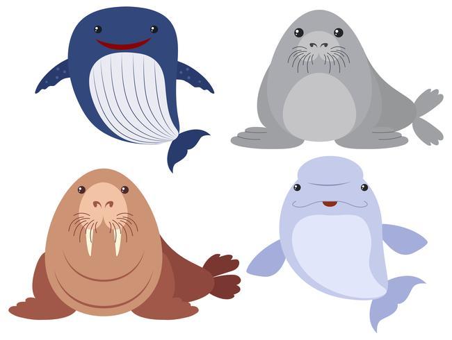 Zeedieren op witte achtergrond vector