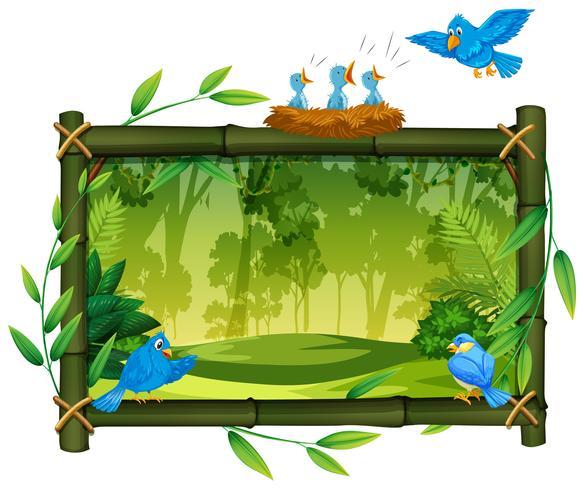 Telaio in legno di uccello su natura