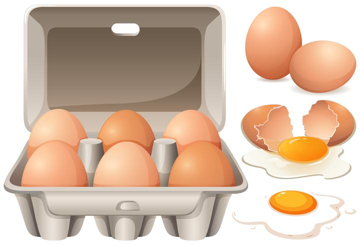 Rohe Hühnereier und Eigelb