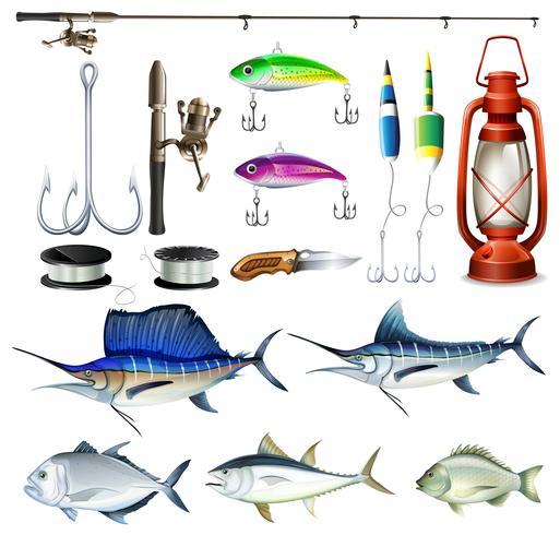Conjunto de pesca com equipamento e peixe
