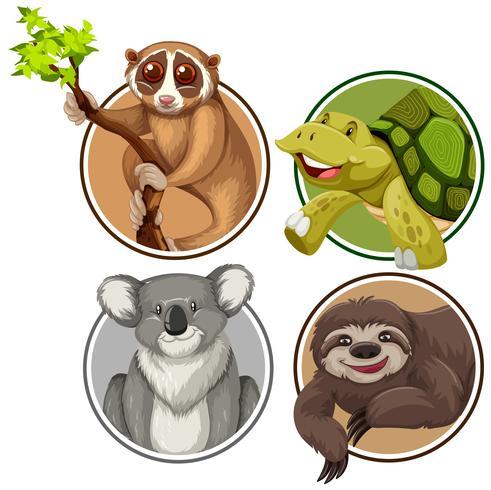 Conjunto de animales exóticos en banner círculo.