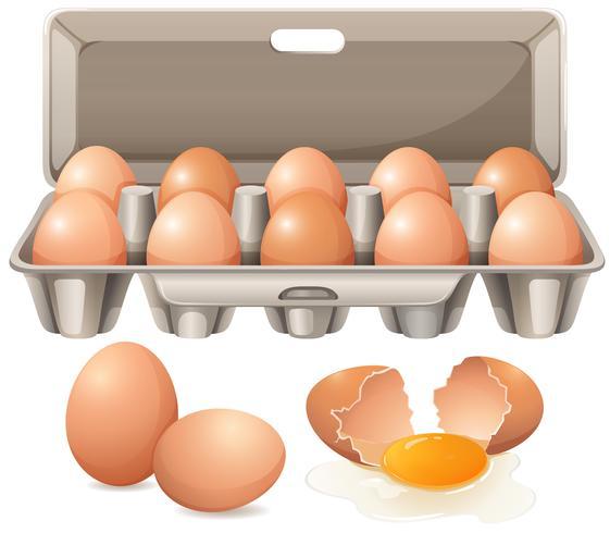 Cartón de huevos y yema de huevo cruda.