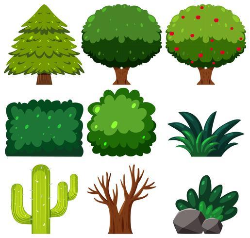 Jogo, de, planta verde