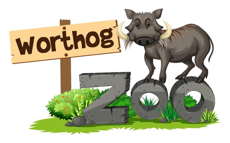Worthog dans le zoo