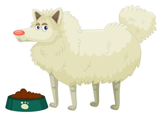 Lindo perro de piel blanca.