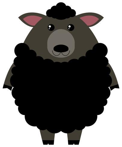 Schwarze Schafe auf weißem Hintergrund