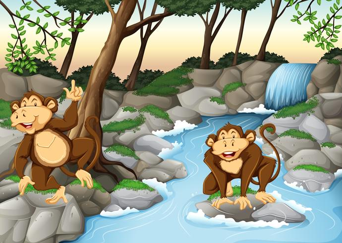 Two monkeys living by the waterfall - Download Free Vector Art, Stock Graphics & Images