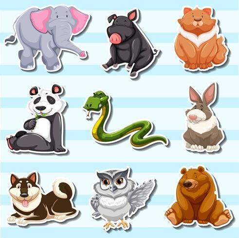 Disegno adesivo con molte creature della fauna selvatica