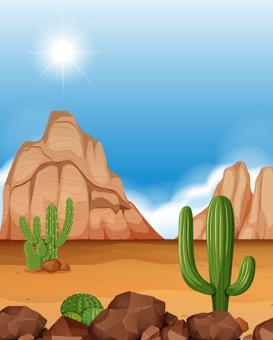 Escena del desierto con montañas y cactus