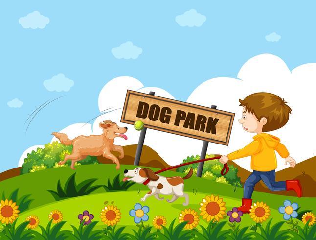 Un niño paseando perro