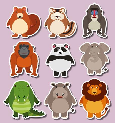 Design da etiqueta com animais fofos