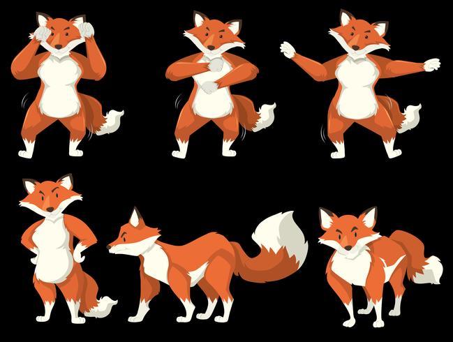 Fox-karakter danspositie