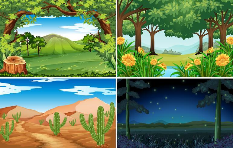 Quatro cenas de floresta e deserto