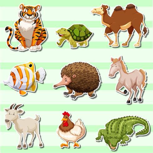 Klistermärke med vilda djur