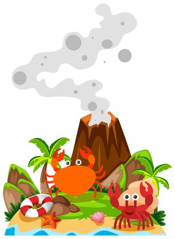 Crabs and volcano on island