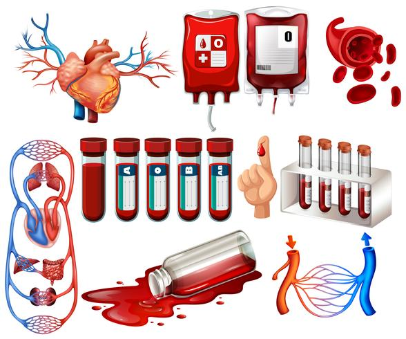 Menselijk bloed en organen