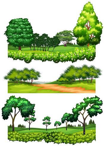 Cenas da natureza com árvores e campos