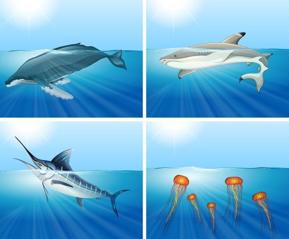 Tiburones y otros animales marinos en el mar.