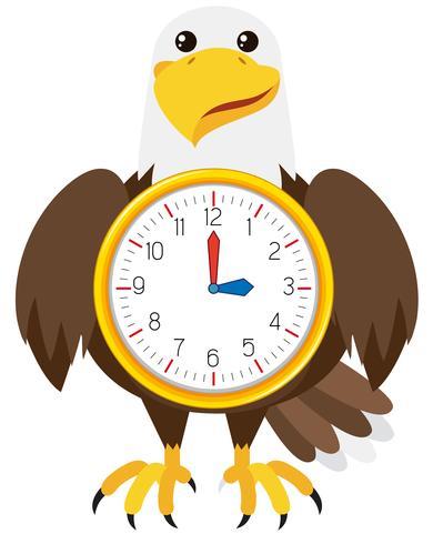 Eagle-klok witte achtergrond