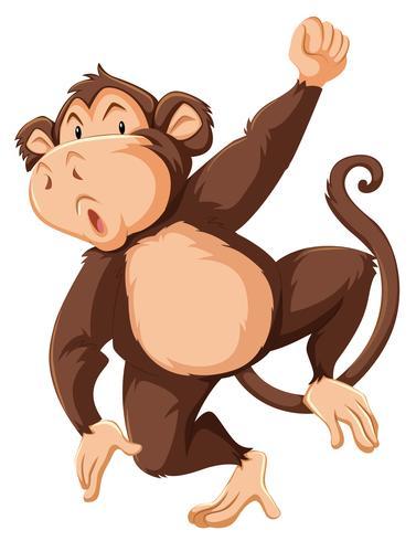Ein Affecharakter auf weißem Hintergrund