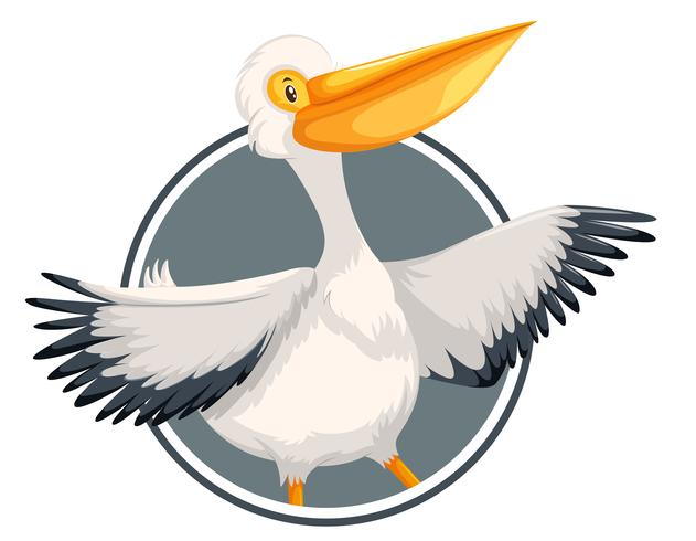 Pelikan auf Kreisfahne vektor