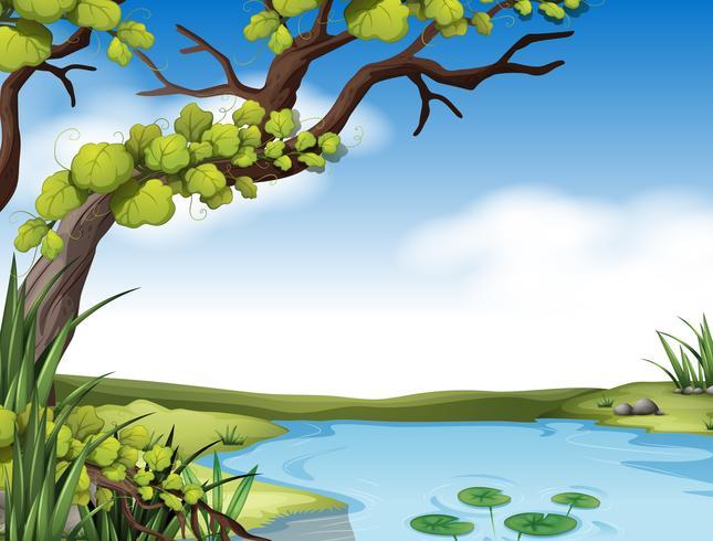 Rivierscène met boom op de rivierbank