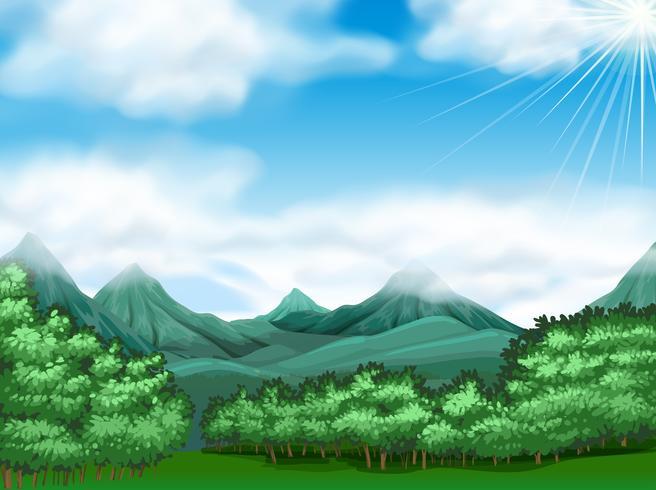 Scena della foresta con alberi e montagne vettore