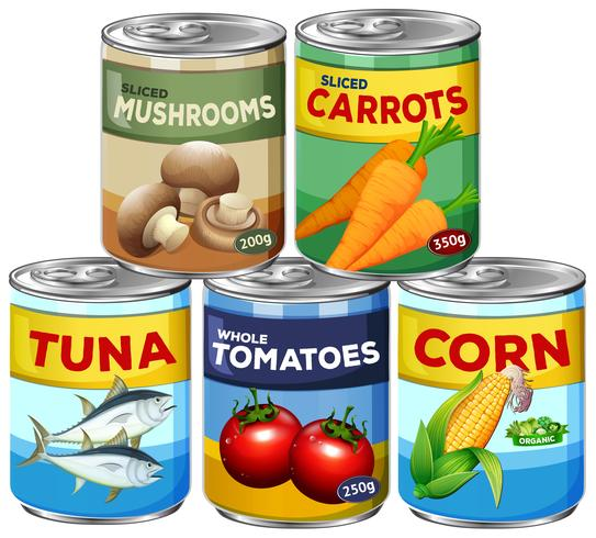 A Set of Can Food