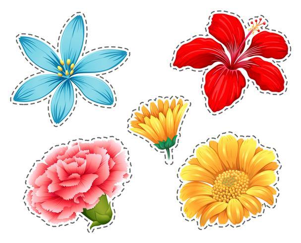 Set de pegatinas con diferentes tipos de flores. vector
