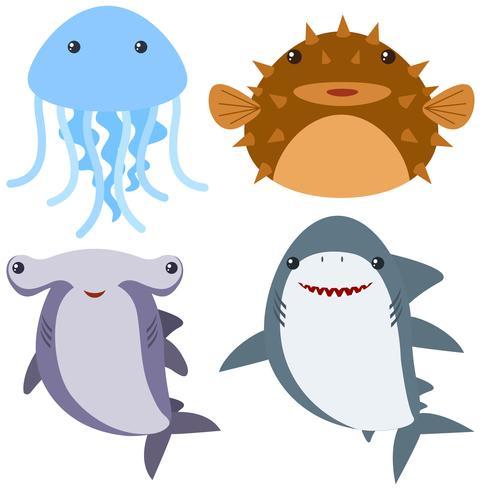 Zeedieren op witte achtergrond