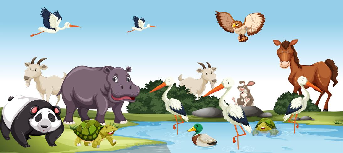 Verschillende wilde dieren scène
