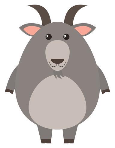 Cabra cinzenta com cara feliz vetor