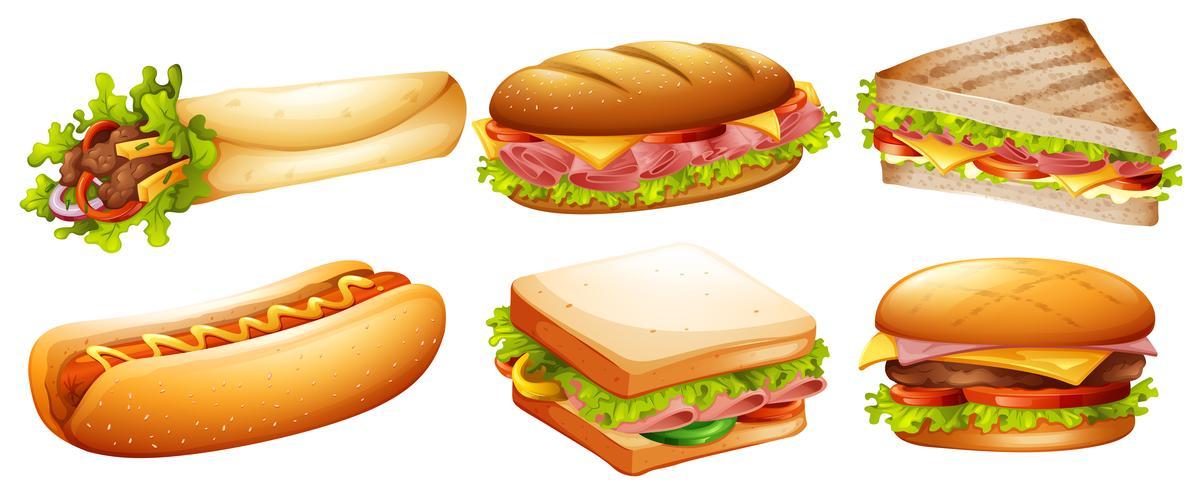 Diferentes tipos de comida rápida. vector