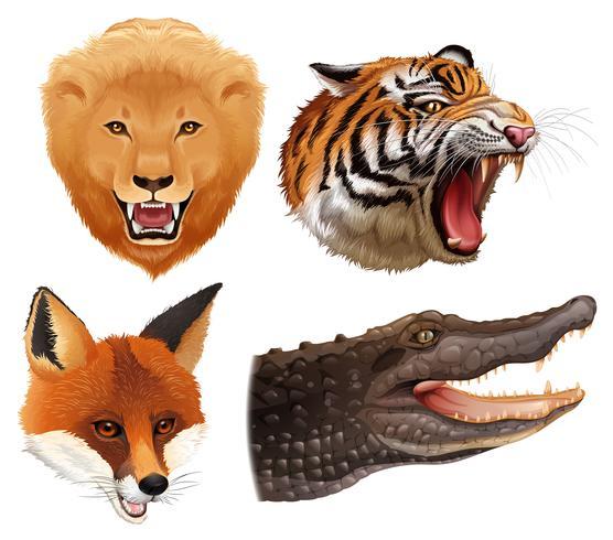 Set van dieren hoofden