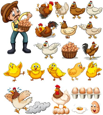 Farmer collecting eggs from chickens