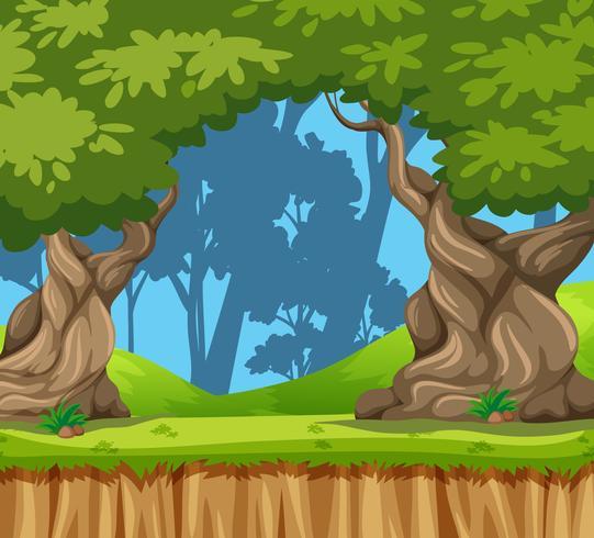 Uno sfondo di natura giungla